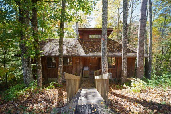 exterior of birch cabin