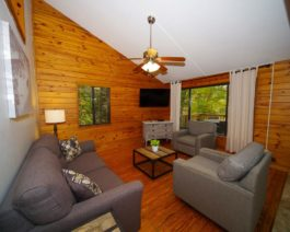 living room in birch cabin
