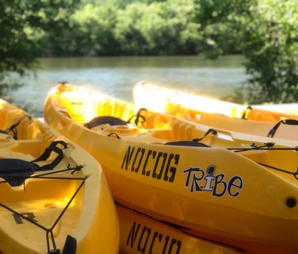 sit on top kayaks on the chattahoochee river