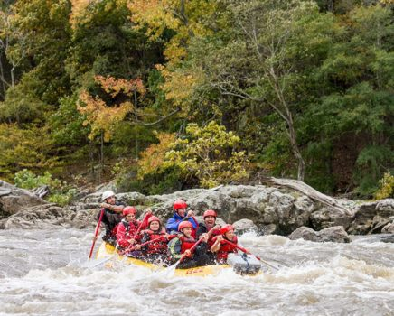 Rafters on the French Broad River Rafting: Full-Day (with Lunch) trip