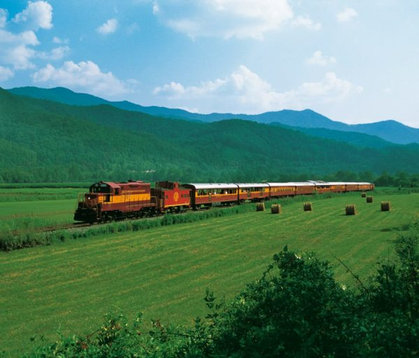 Train on the Great Smoky Mountain & Nantahala Train Trips