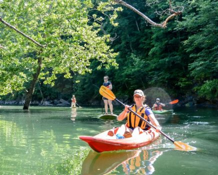 woman and group kayaking on the Guided Fontana Lake Tour trip