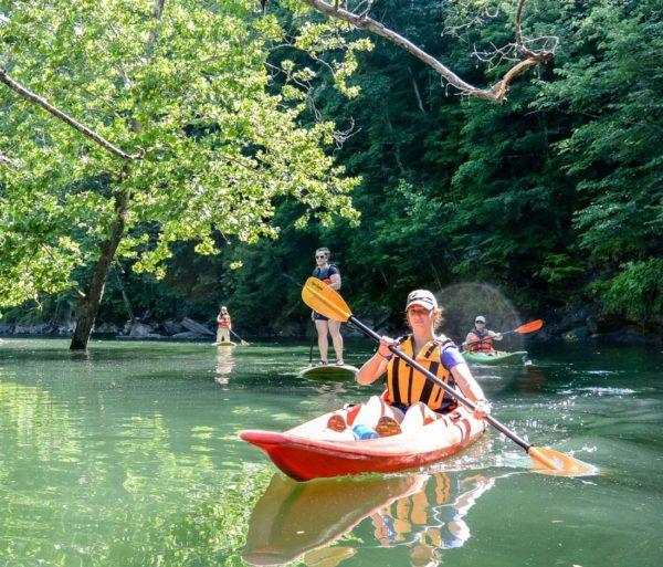 woman and group kayaking on the Guided Fontana Lake Tour trip