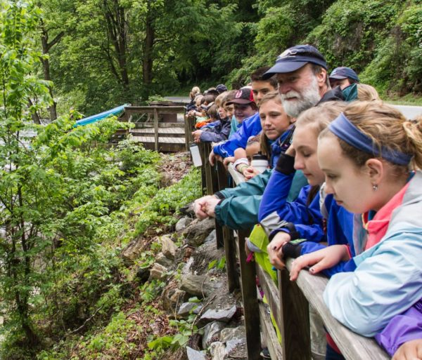 Kids looking over a railing on a guided hike trip