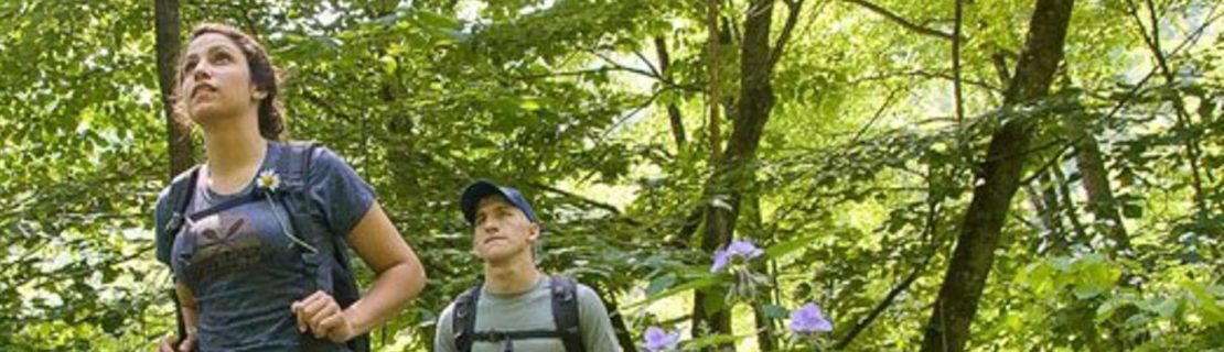 Teens on a guided hike trip