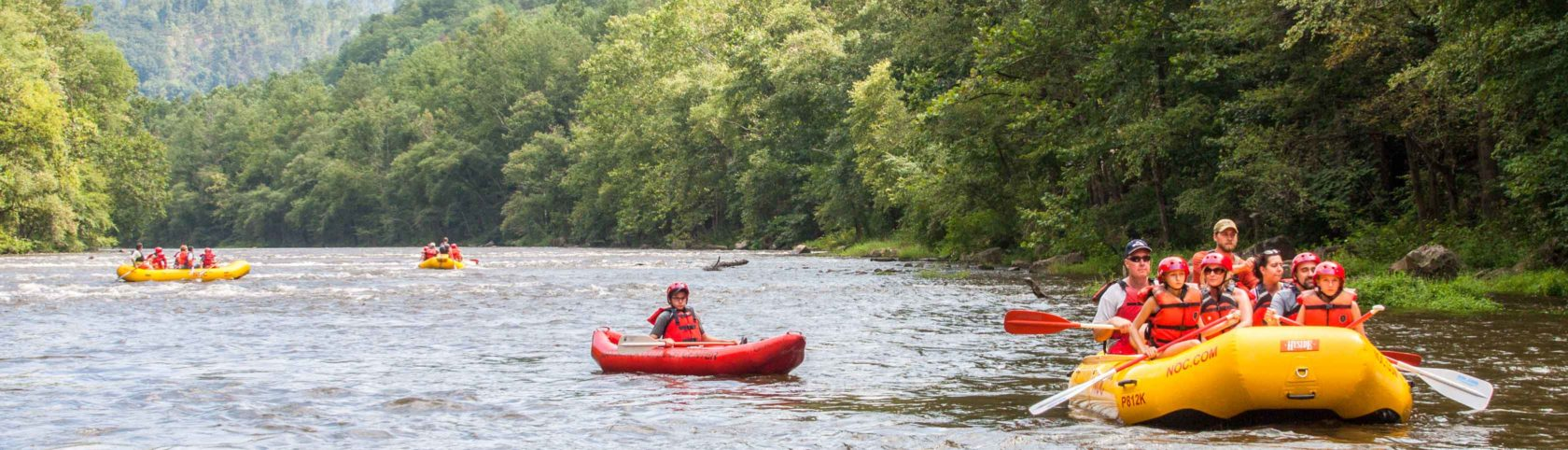 Guests rafting in Knoxville, TN