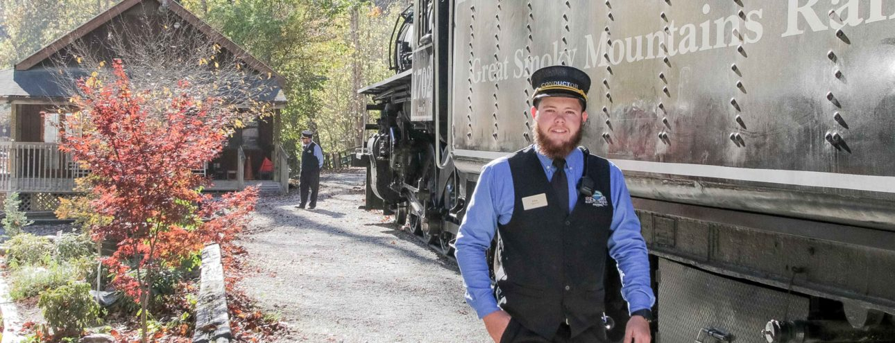 Train conductor standing by train