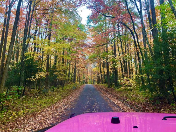 Pink Jeep Tours in Gatlinburg, TN
